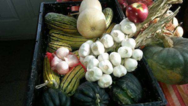 Paniers personnalisés de fruits et légumes - maferme.ca