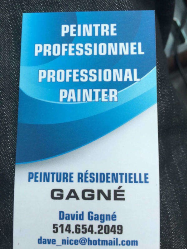 Peintre professionnel / professional painter
