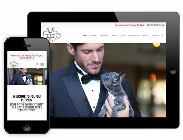 Conception de site web à montréal | web designer | conception site web | logo design