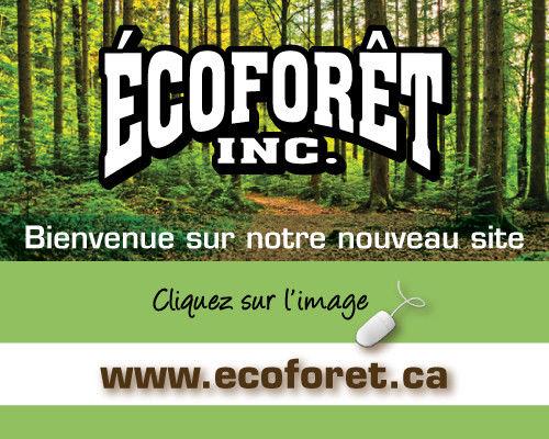 Autres à chicoutimi | consultant forestier, coupe de bois