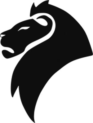 Consultant branding | design | web | marketing