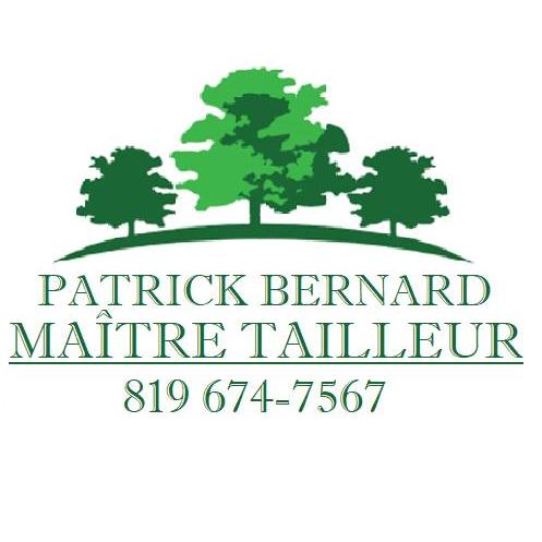 Taille de haies de cèdre & taillage d'arbustes à sherbrooke | patrick bernard maîtretailleur