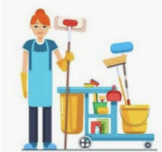 Femme de ménage - dispo urgences7/7 - experience,minutieuse,bon prix