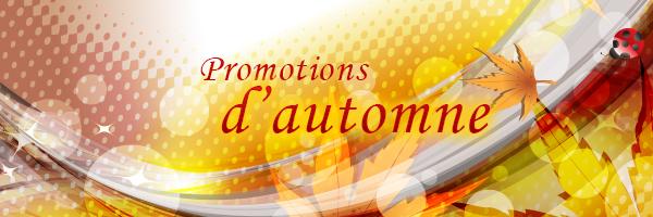 Massage suédois à lévis promotion octobre et novembre
